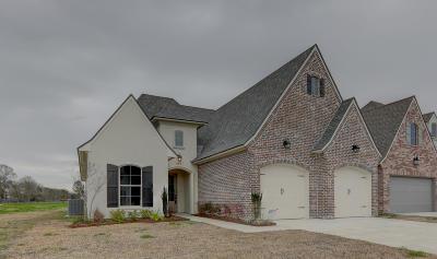 San Sebastian Single Family Home For Sale: 204 Santander Drive