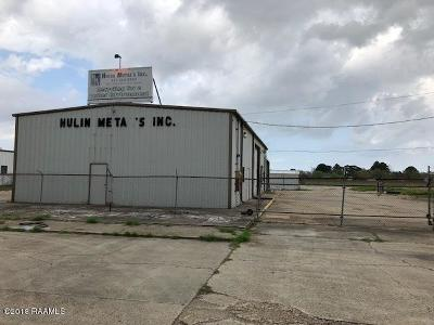 Iberia Parish Commercial For Sale: 2411 Hulin Road