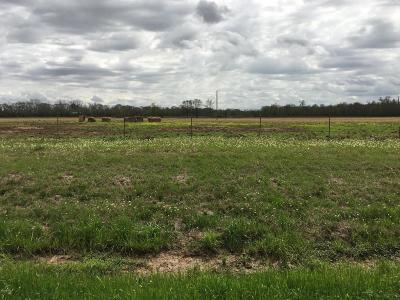 St Landry Parish Farm For Sale: 1000 I-49 And Hwy 103