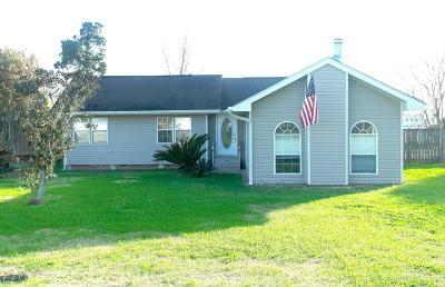 New Iberia Single Family Home For Sale: 2902 S Curtis Drive