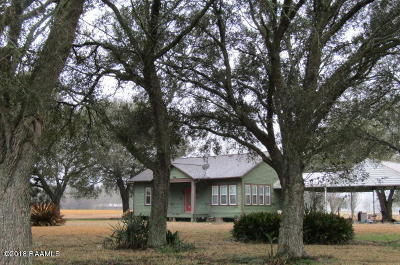 Arnaudville Single Family Home For Sale: 229 Hwy 741