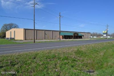 Iberia Parish Commercial For Sale: 4519 Hwy 90