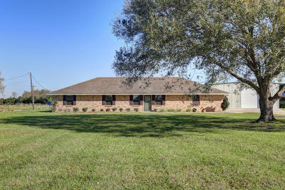 Opelousas Single Family Home For Sale: 117 Dufilho Road