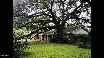 Opelousas Single Family Home For Sale: 2705 S Union Street