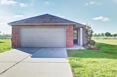 Breaux Bridge Single Family Home For Sale: 1120 Bridgetowne Lane