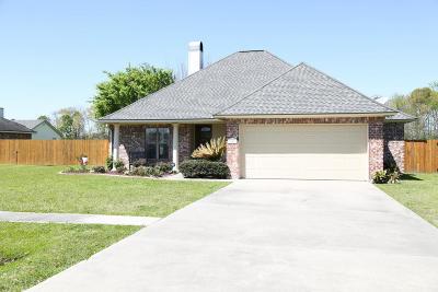 Breaux Bridge Single Family Home For Sale: 821 Belle Drive