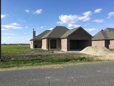 Breaux Bridge Single Family Home For Sale: 1222 Delcambre Road