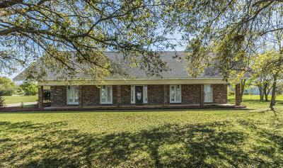 Opelousas Single Family Home For Sale: 230 Saint James Avenue