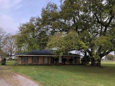 Abbeville Single Family Home For Sale: 21028 S La Hwy 82