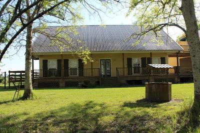 Vermilion Parish Single Family Home For Sale: 14207 Veterans Memorial Dr
