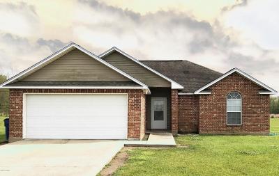 Opelousas Single Family Home For Sale: 377 Azeline Drive