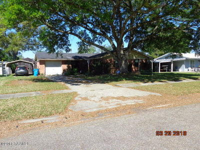 Iberia Parish Single Family Home For Sale: 4211 South Drive