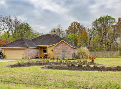 Carencro  Single Family Home For Sale: 211 Hesper Drive