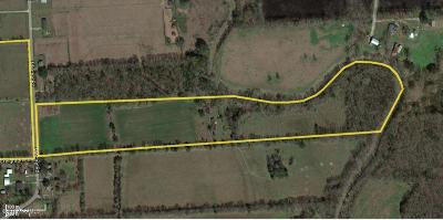 Farm For Sale: Meche Road