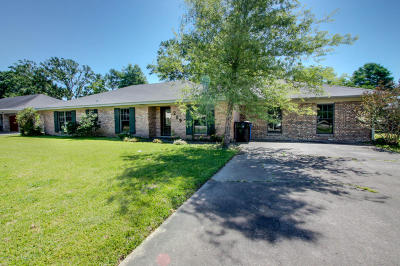 Single Family Home For Sale: 209 Estate Drive
