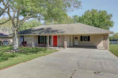 Single Family Home For Sale: 220 Maureen Drive