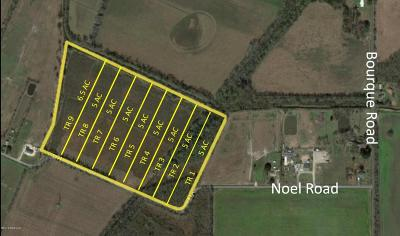 Church Point Residential Lots & Land For Sale: Noel Road (Tr#3)