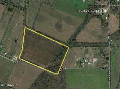 Church Point Residential Lots & Land For Sale: Noel Road (Tr#8)