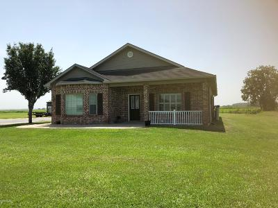 Basile Single Family Home For Sale: 9003 Evangeline Hwy