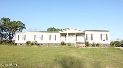 Opelousas Single Family Home For Sale: 7170 La-31