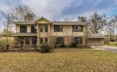 Carencro Single Family Home For Sale: 176 Greenfield Drive