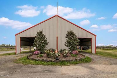 St Landry Parish Farm For Sale: 2187 Hwy 187