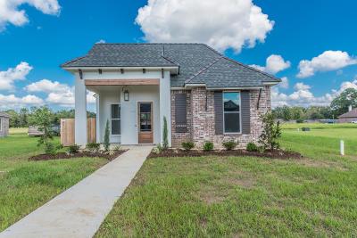 Lafayette Parish Single Family Home For Sale: 408 Dunvegan Court