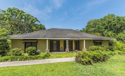Ville Platte Single Family Home For Sale: 404 N Dossman Street