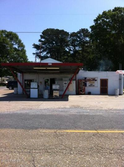 Evangeline Parish Commercial For Sale: 3233 Old Hwy 13