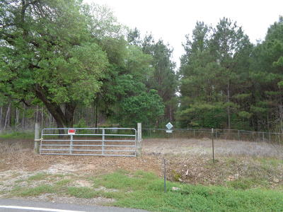 Evangeline Parish Farm For Sale: 1262 Jeanus Street