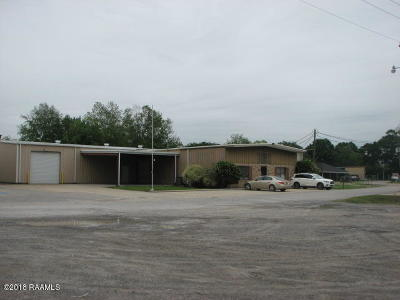 Commercial For Sale: 108 Bluffwood Drive