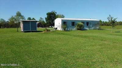 Scott Single Family Home For Sale: 227 Louis Baer