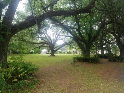 St Martin Parish Residential Lots & Land For Sale: 1205 N Main