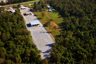 St Martin Parish Commercial For Sale: 1978 Atchafalaya River Hwy.