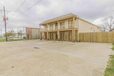 Commercial For Sale: 203 E Amedee Drive