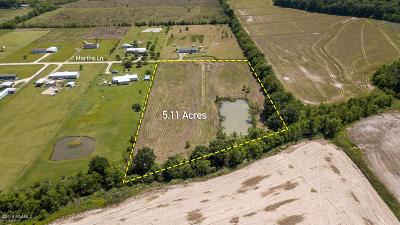 Acadia Parish Farm For Sale: Tbd Martha Lane