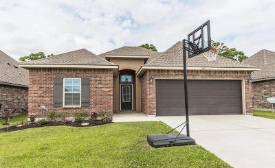 Youngsville Single Family Home For Sale: 505 Flanders Ridge Drive