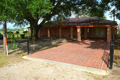 New Iberia Single Family Home For Sale: 8317 Weeks Island Road