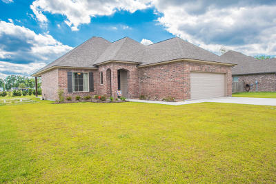 Breaux Bridge Single Family Home For Sale: 1012 Hammock Lane Lane
