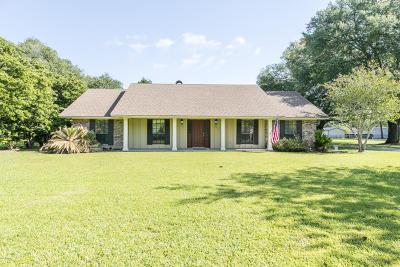 Opelousas Single Family Home For Sale: 217 Saint John Avenue
