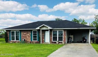 Abbeville  Single Family Home For Sale: 11605 Judge Doucet Road