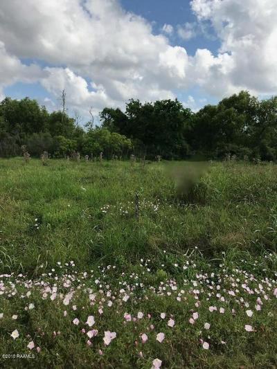 Vermilion Parish Residential Lots & Land For Sale: 26143 La Hwy. 82