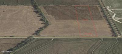 Crowley Farm For Sale: Lot 6-F7 Ellis Road