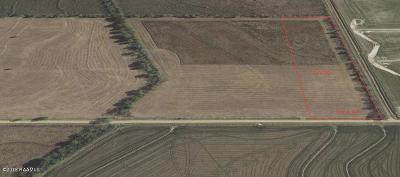 Crowley Farm For Sale: Lot 6-F8 Ellis Road