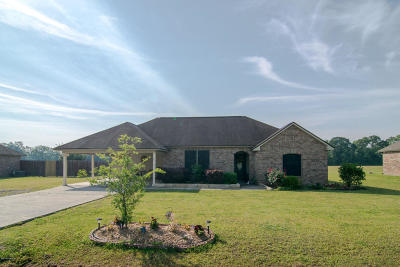 St. Martinville Single Family Home For Sale: 1042 Jordan Drive