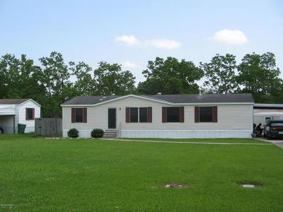 Church Point Single Family Home For Sale: 252 N Bellard Street