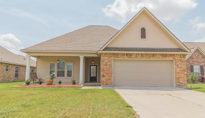 Highland Ridge Single Family Home For Sale: 113 Sunny Peak Street