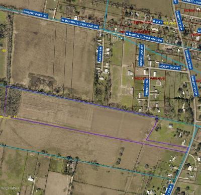 St Landry Parish Farm For Sale: Tbd E Hwy 93 Sunset Strip