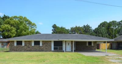 New Iberia Single Family Home For Sale: 607 Peach Street