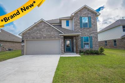 Verot Park Single Family Home For Sale: 204 Amaya Avenue
